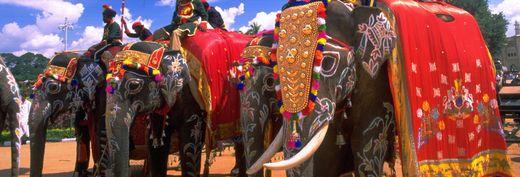 Foto: Indisches Fremdenverkehrsamt