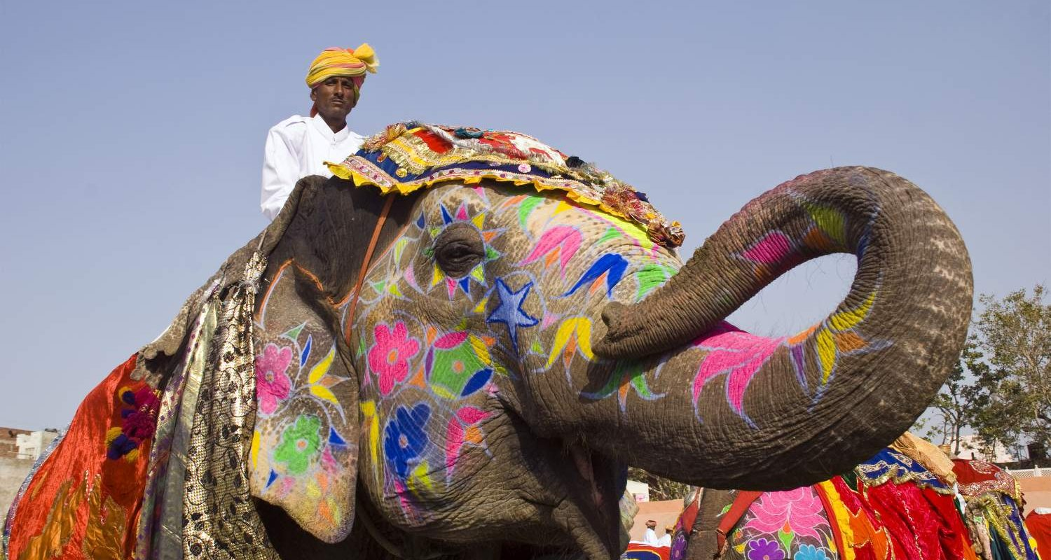 Decorated-Elephant-Rajasthan